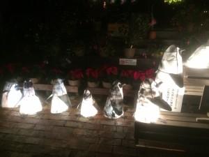 ペンギン たくさん