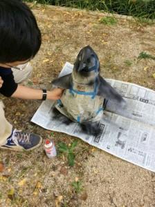 ペンギン 色付け